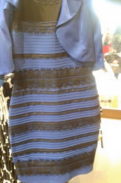 c63f86a0f48 La perception des couleurs