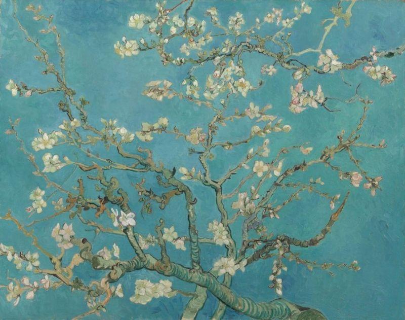 Vincent van gogh schilderijen
